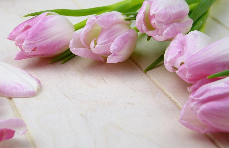 flower-3070161_960_720